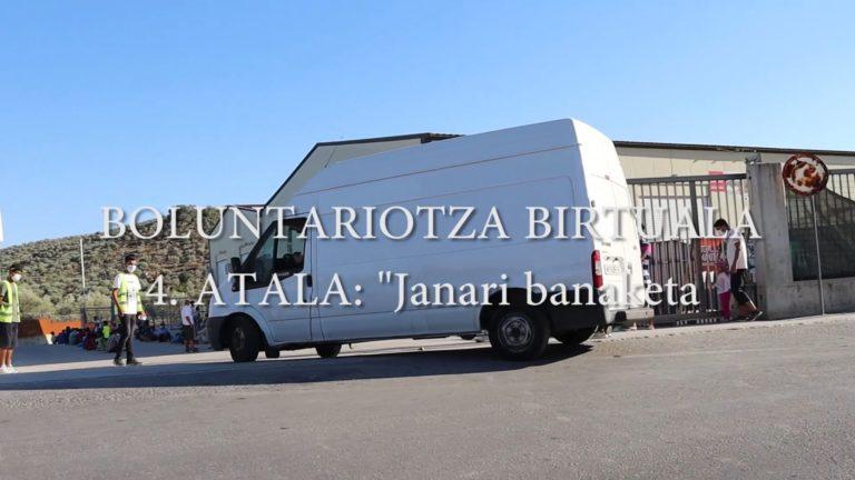 Boluntariotza birtuala 4 janari banaketa